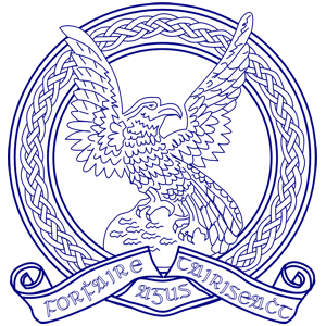 James Fitzmaurice - Irish Air Corps crest