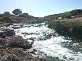 Afluente del Rio Loa en Calama, (foto José Rojas).jpg