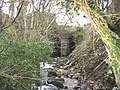 Afon Caledffrwd emerging from the mill wheel tunnel at Melin Sam - geograph.org.uk - 343883.jpg