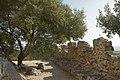 Al Castello della Fava - panoramio.jpg
