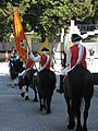 Alba Carolina Fortress 2011 - Changing the Guard-9.jpg