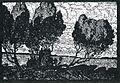 Albert König Wacholdergruppe I.jpg