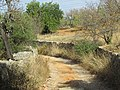 Albufeira, Country lane with dry stone wall in Enxertia, 16 October 2016.JPG