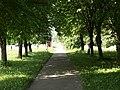 Aleja - panoramio (8).jpg