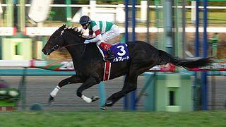 Asahi Hai Futurity Stakes