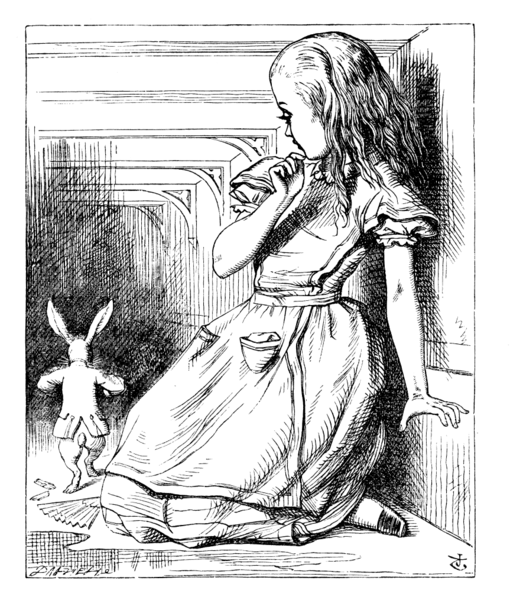 Alice in the Rabbit Hole