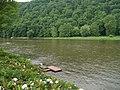 Allegheny River - panoramio.jpg