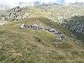 Alpe Colla 1.jpg