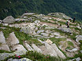 Alpine Peace Crossing 25.JPG