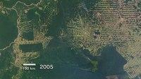 Archivo:Amazon Deforestation in Rondonia, Brazil.ogv