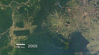 Archivo:Amazon Deforestation in Rondonia, Brazil.ogv