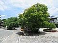 Amidaji Kamigyo-ku 004.jpg