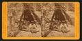 An Octogenarian, by Muybridge, Eadweard, 1830-1904.png
