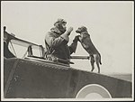 An observer with his dog who does acrobatic feats on the fuselage, Bestanddeelnr 158-2537.jpg