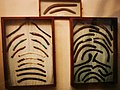 Ancient Egyptian Throwing Sticks from Tutankhamon Tomb in Cairo Egyptian Museum.jpg