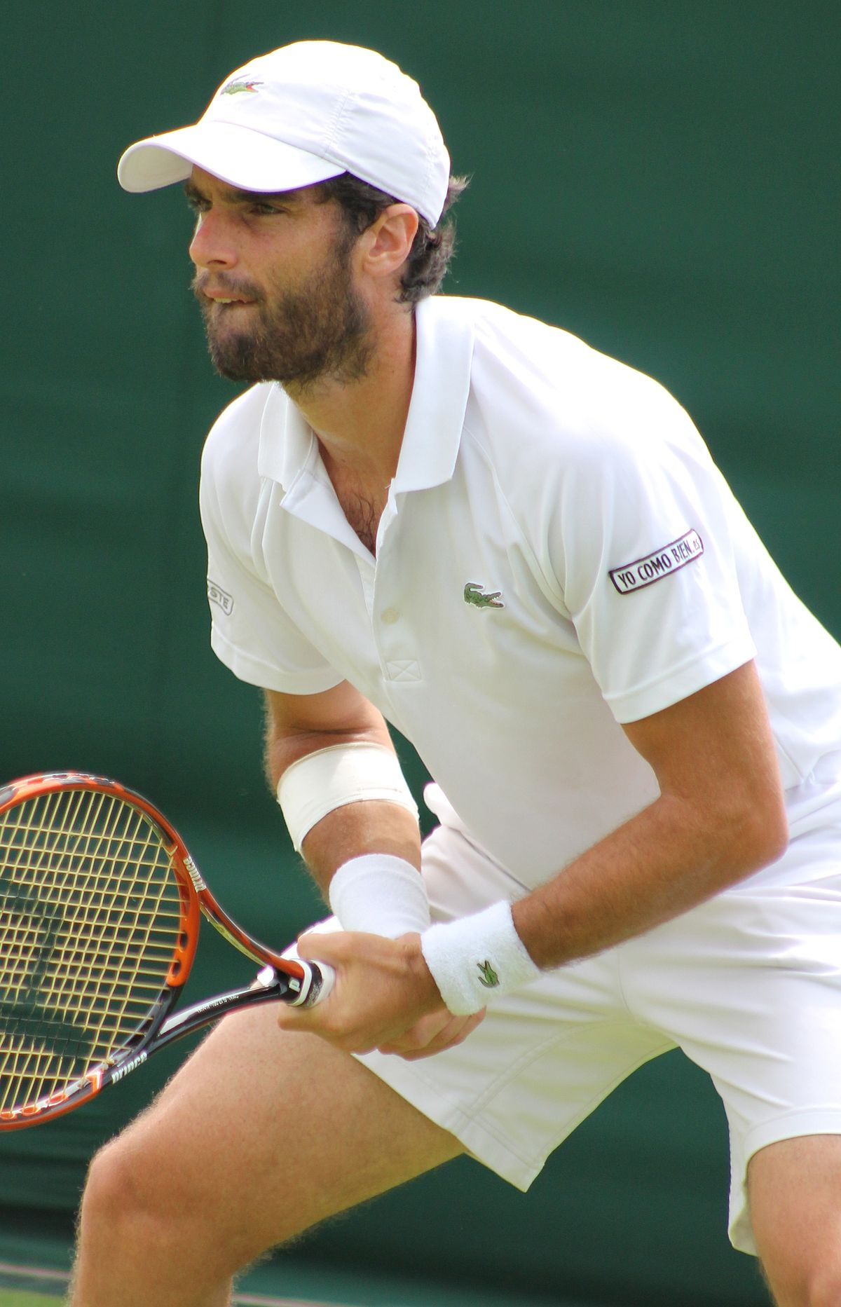 Pablo Andújar - Wikipedia