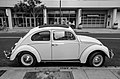 Antique Car (80086745).jpeg