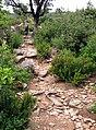 Araghju sentier (premières montées).jpg