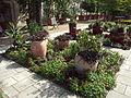 Arboretum Gaston Allard 14.JPG
