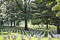 Arlington National Cemetery 2011 3.jpg