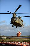 Army and RAF Chinook called in to support Environmental Agency MOD 45159774.jpg