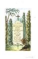 Arnaud - Recueil de tombeaux des quatre cimetières de Paris - Vestris (colored).jpg