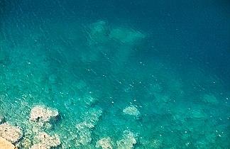 Athos-sea-shore.jpg