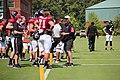 Atl Falcons training camp July 2016 IMG 7726.jpg