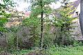 Aub, Stadtmauer, Mühlstraße 31-003.jpg