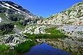 Auf dem Grossen Sankt Bernhard Pass im Wallis.jpg