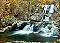 Autumn-trees-surround-waterfalls - Virginia - ForestWander.jpg