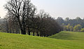 Avenue of trees at south of Wollaton Hall, Nottinghamshire, England 01.jpg
