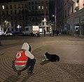 Bénévole Croix-Rouge et chien, place Ampère (Lyon) de nuit.JPG