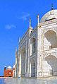 Back Taj.jpg