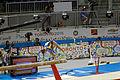Balance 2 2015 Pan Am Games.jpg