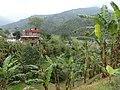 Bansbari, Melamchi 45310, Nepal - panoramio (2).jpg