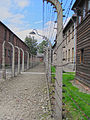 Barbed wire Auschwitz.jpg