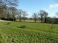 Batsford Arboretum picnic area - geograph.org.uk - 673461.jpg