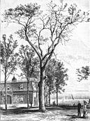 Battle of Fort Dearborn tree Andreas 1884.jpg