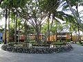 Bavaro — Iberostar — hotel garden.JPG