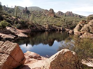 Pinnacles National Park - The Bear Gulch Reservoir at Pinnacles