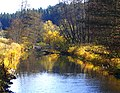 Beaver - panoramio (3).jpg