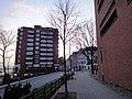 Bei der Erholung, St. Pauli, Hamburg, Germany - panoramio (13).jpg