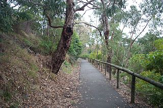 Ringwood–Belgrave Rail Trail