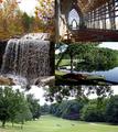 Bella Vista collage.png