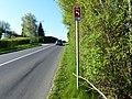 Bellevue panneau suisse 4.51.2.jpg