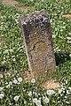 Beršići (Galič), groblje na potesu Kainovac (72).jpg