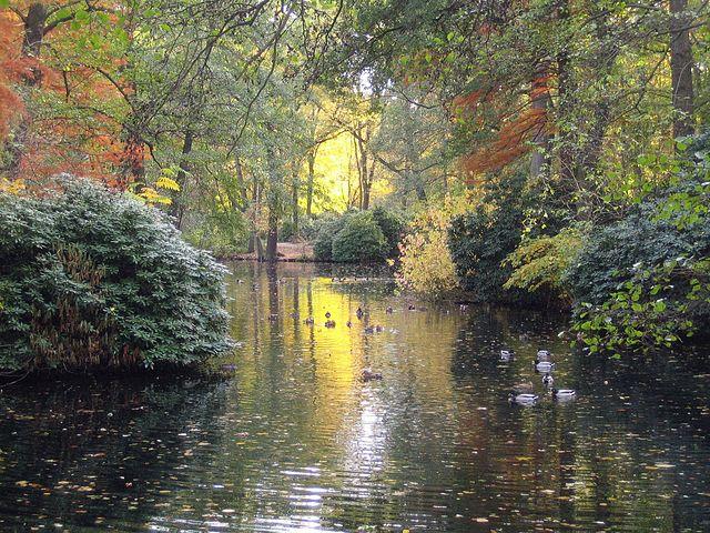 Großer Tiergarten