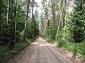 Bezdonių sen., Lithuania - panoramio (17).jpg