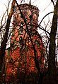 Bierbaum tower, Szreniawa, 18.3.1993r.jpg